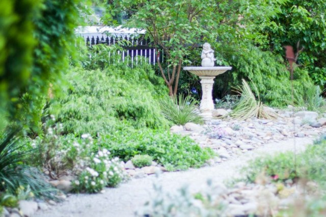 Garden rejuvenation of a Vermont South property in Melbourne by Inspiring Landscape Solutions