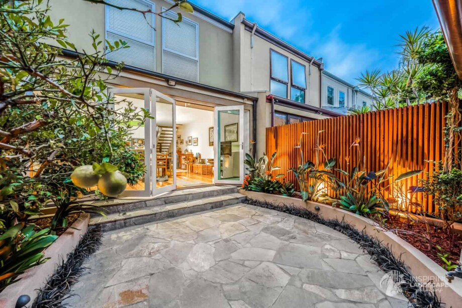 Rear courtyard planted with citrus trees and clivias in Hawthorn East courtyard garden design by Parveen Dhaliwal