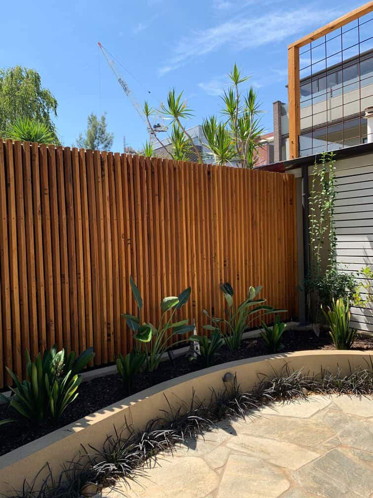 Left hand side garden bed with bird of paradise and clivias in Hawthorn East courtyard garden design by Parveen Dhaliwal