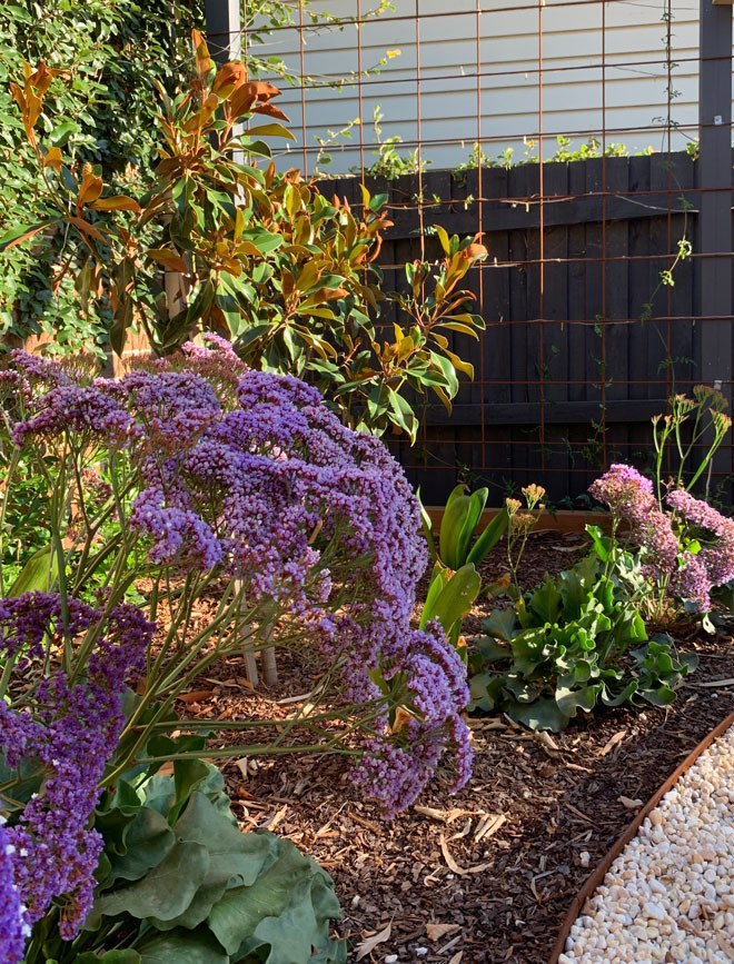 Garden rejuvenation of a Surrey Hills property in Melbourne by Inspiring Landscape Solutions