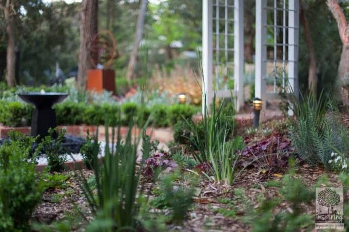 Cottage garden planting in Blackburn front garden design