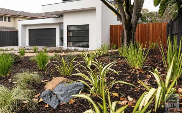 Street view of front garden in Burwood garden design by Inspiring Landscape Solutions