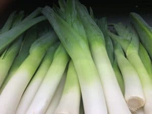 Picture of leek for your productive garden landscape design