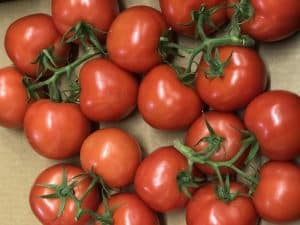 Picture of tomatoes for your productive garden landscape design