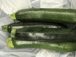 Picture of zucchini for your productive garden landscape design