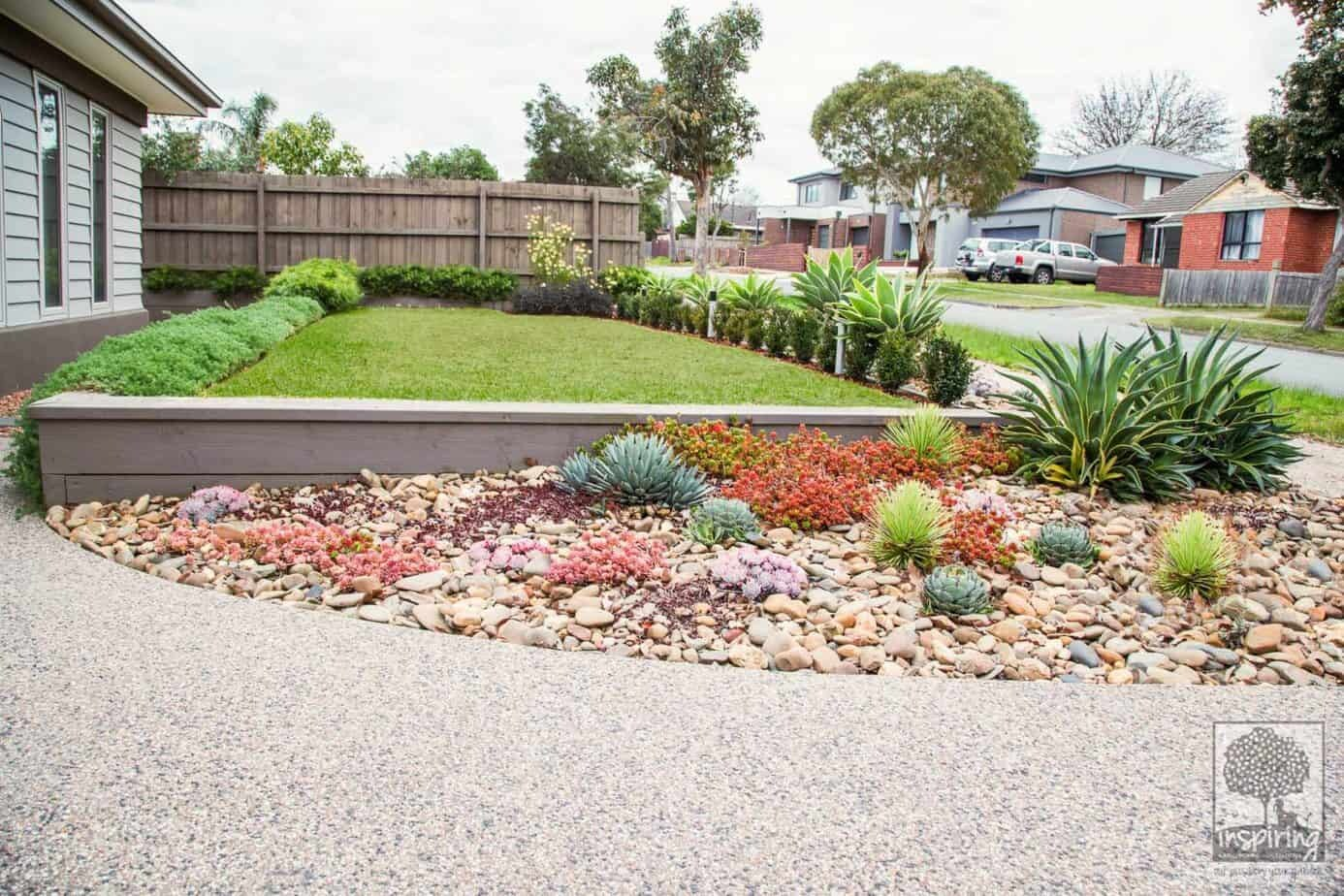 Ashburton landscape design with different types of succulents