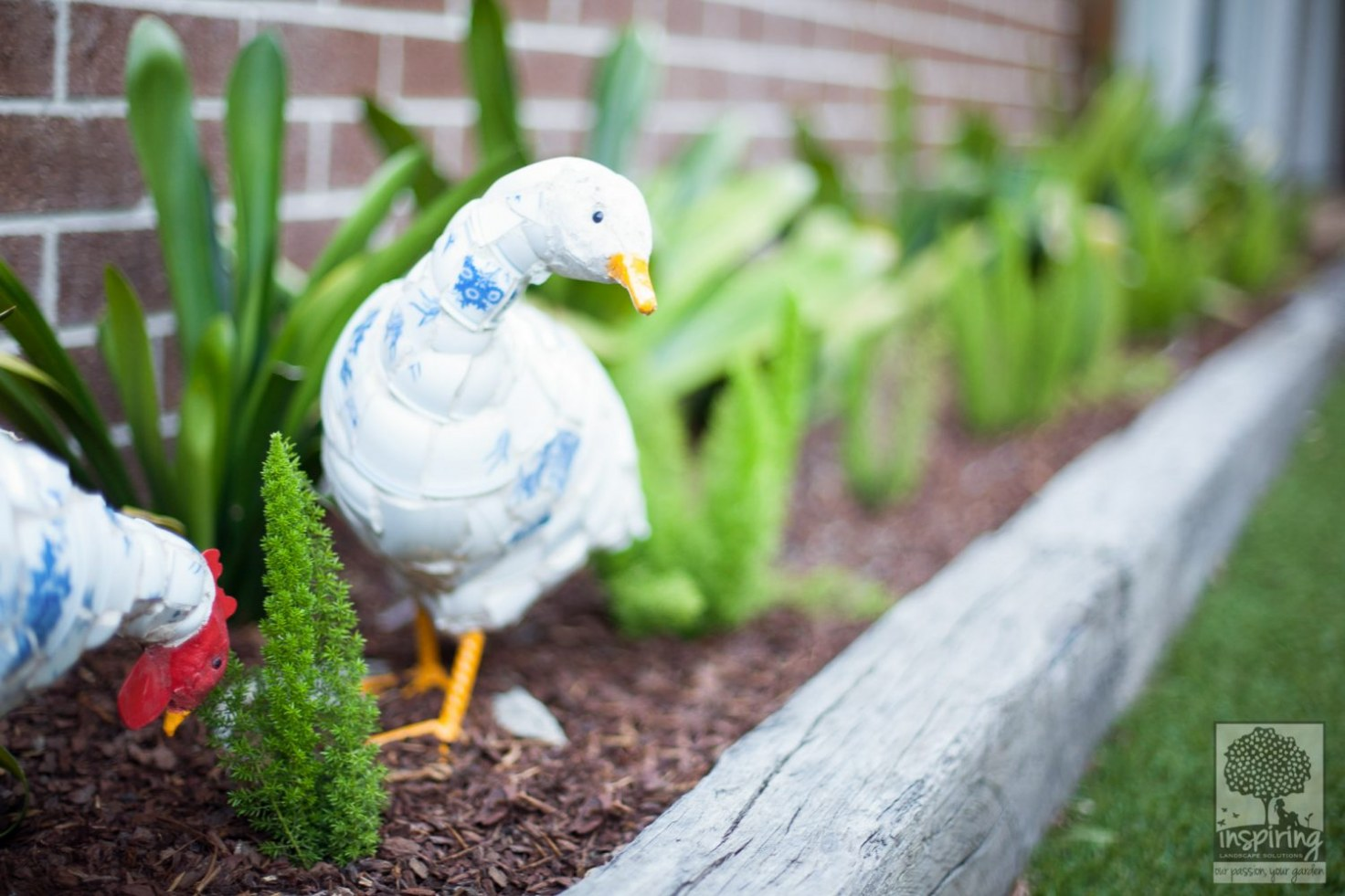 Cute ceramic duck and rooster used as garden accessory in Glen Waverley landscape design