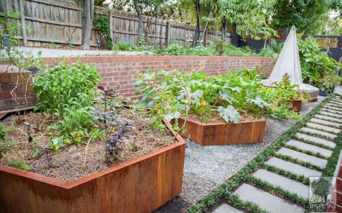 Urban food garden in productive part of Kew landscape design