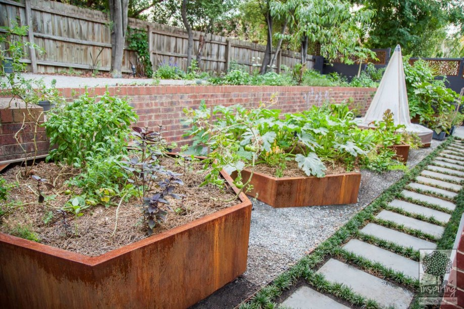 Urban food garden in productive part of Kew landscape design