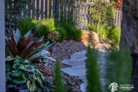 Planting clusters used in Mount Waverley garden design